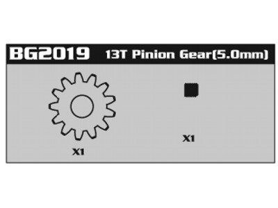 BG2019 13T Pinion Gear